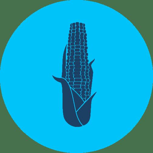 Grain, corn and feed